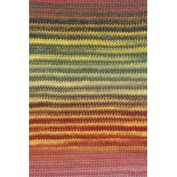 Lang Yarns Mille Colori Baby 845.0013