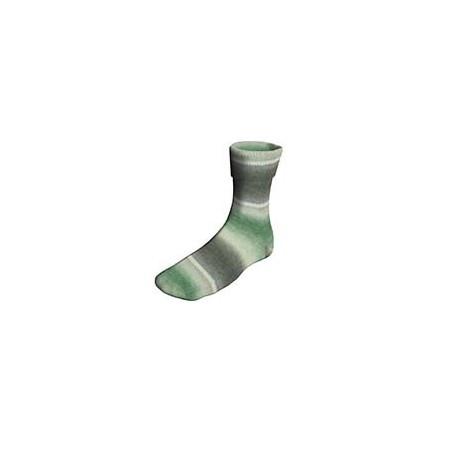 Lang Yarns Twin Soxx 909.0172 groen grijs